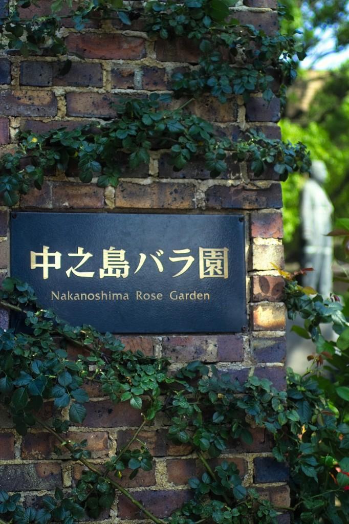 中ノ島バラ園
